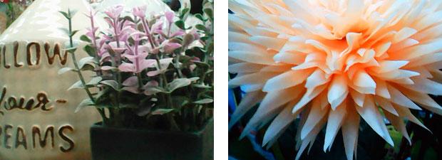 Fotos hechas con la cámara del No1 G2