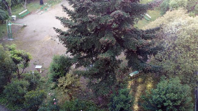 Cámara UMIDIGI C Note fotos a paisajes
