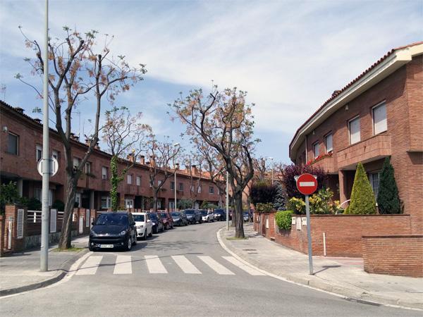 Foto cámara InFocus M560 urbanización