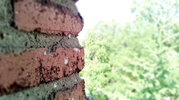Elephone P8 Mini fotos fondo desenfocado